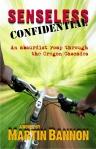 Senseless Confidential, a fun book to read