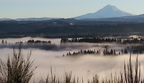 Mt. Hood in Pacific Northwest fog